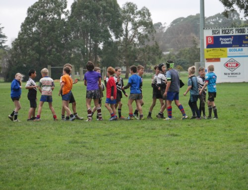 Tararua 7-a-side tournament results